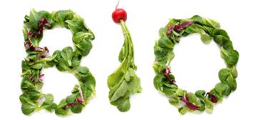 Biologische Groenten & Fruit